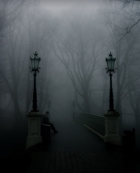 gothic-forest1